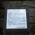 11,豊鹿島神社