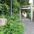 Photos: 鹿島公園