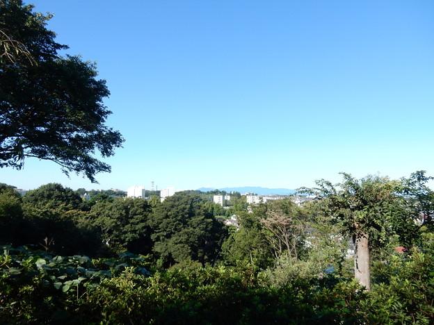 鴨居原市民の森