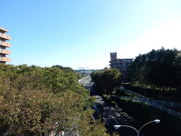 羽沢橋から