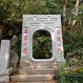 Photos: 三密の道