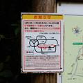 Photos: お知らせ