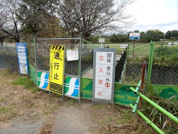 多摩川緑地 福生南公園