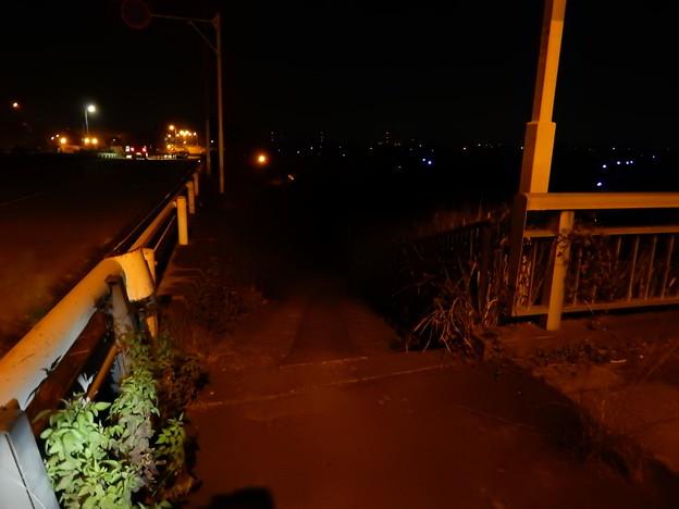新上武大橋左岸