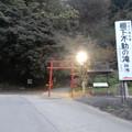 Photos: 棚下不動の滝