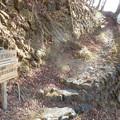 小留浦の姫の石 67