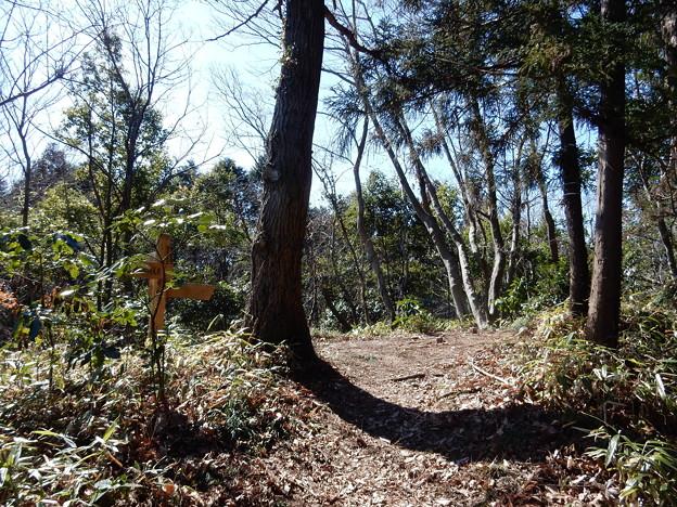 Photos: 北尾根