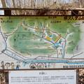 Photos: 横沢入