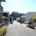 Photos: ゆうひ山