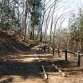 ゆうひ山公園