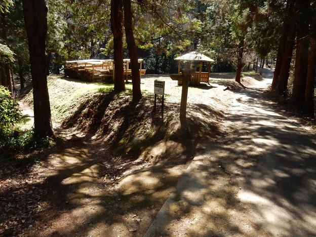 あけぼの・桜山・万葉ハイキングコース(4)