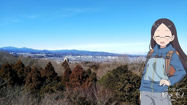桜山展望台から飯能方面