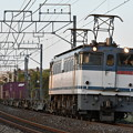 写真: 貨物列車 (EF652090)