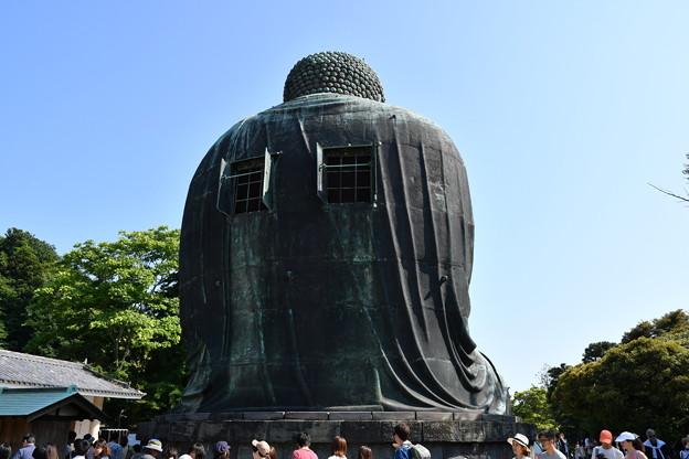 鎌倉の大仏、後ろから