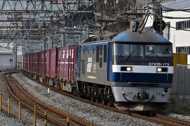 写真: 貨物列車 (EF210-173)