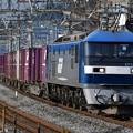 写真: 貨物列車 (EF210-9)