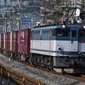 写真: 貨物列車 (EF652081)