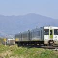 磐越西線 普通列車 (キハ110)