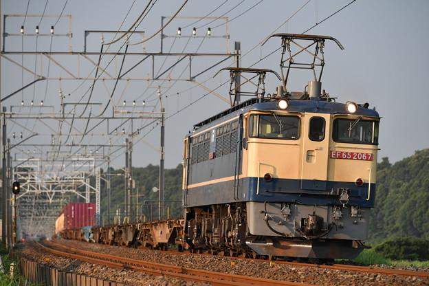 Photos: 貨物列車 (EF652067)