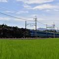 Photos: SL大樹2号 (C11207)