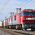 写真: 貨物列車 (EH500-43)