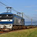鹿嶋貨物 (EF210-6) (D500)