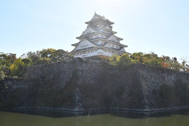 内堀の外から見る大阪城