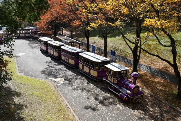 写真: 蒸気機関車?