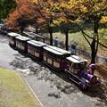 Photos: 蒸気機関車?