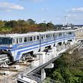 写真: 大阪モノレール