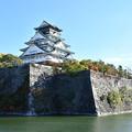 Photos: 大阪城、内堀の外から撮影