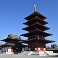 Photos: 四天王寺 五重塔と金堂