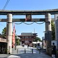Photos: 四天王寺 石鳥居