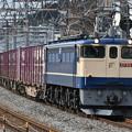 Photos: 貨物列車 (EF652081)