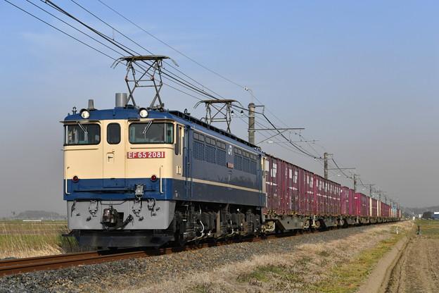 貨物列車@EF652081 (鹿島貨物)