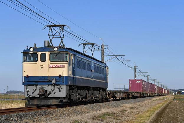 貨物列車@EF652096 (鹿島貨物)
