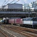 貨物列車 (EF652057)