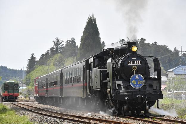 SLもおか号 (C11325)