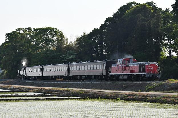 真岡鐵道 普通列車 (DE101535)