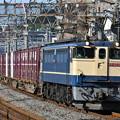 貨物列車 (EF651067)