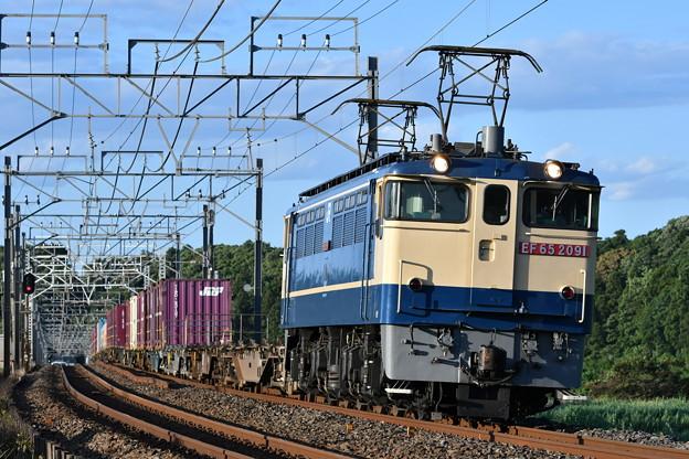 貨物列車 (EF652091)
