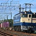 Photos: 貨物列車 (EF652091)