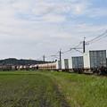 Photos: 貨物列車 (後追い)