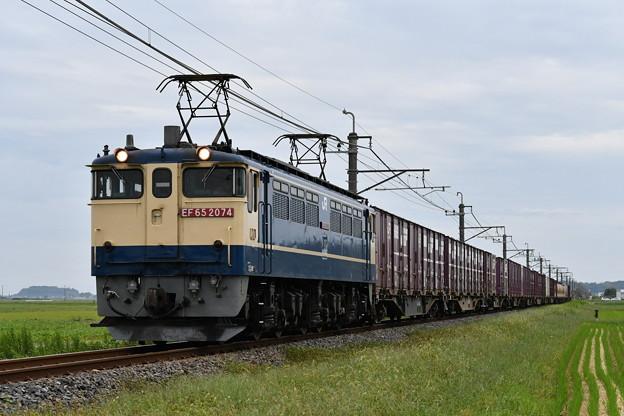 Photos: 貨物列車@EF652074 (鹿島貨物)