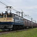 貨物列車@EF652074 (鹿島貨物)
