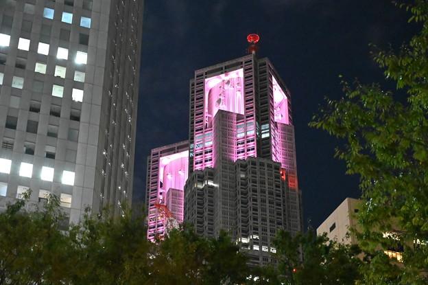 新宿の夜景・都庁