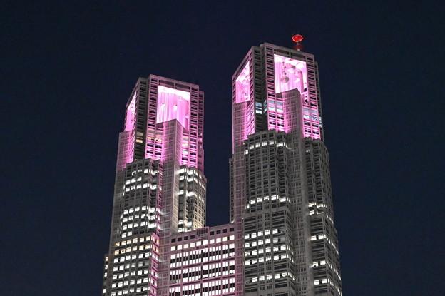 新宿の夜景・東京都庁舎
