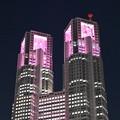 Photos: 新宿の夜景・東京都庁舎