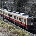 Photos: 臨時列車 6050型旧塗装