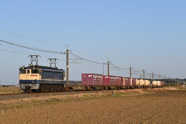 鹿島貨物 (EF652139)